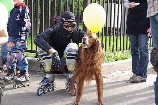 космическая собака и инопланетянин (детская покатушка roller.RU 2010)